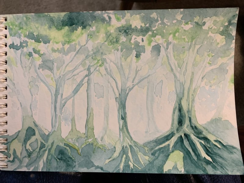 Forest Encounter watercolor